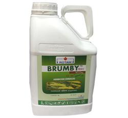 BRUMBY-80-EC