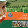 La nutrition foliaire le 03/03/2020 à BISKRA et le 05/03/2020 à EL OUED